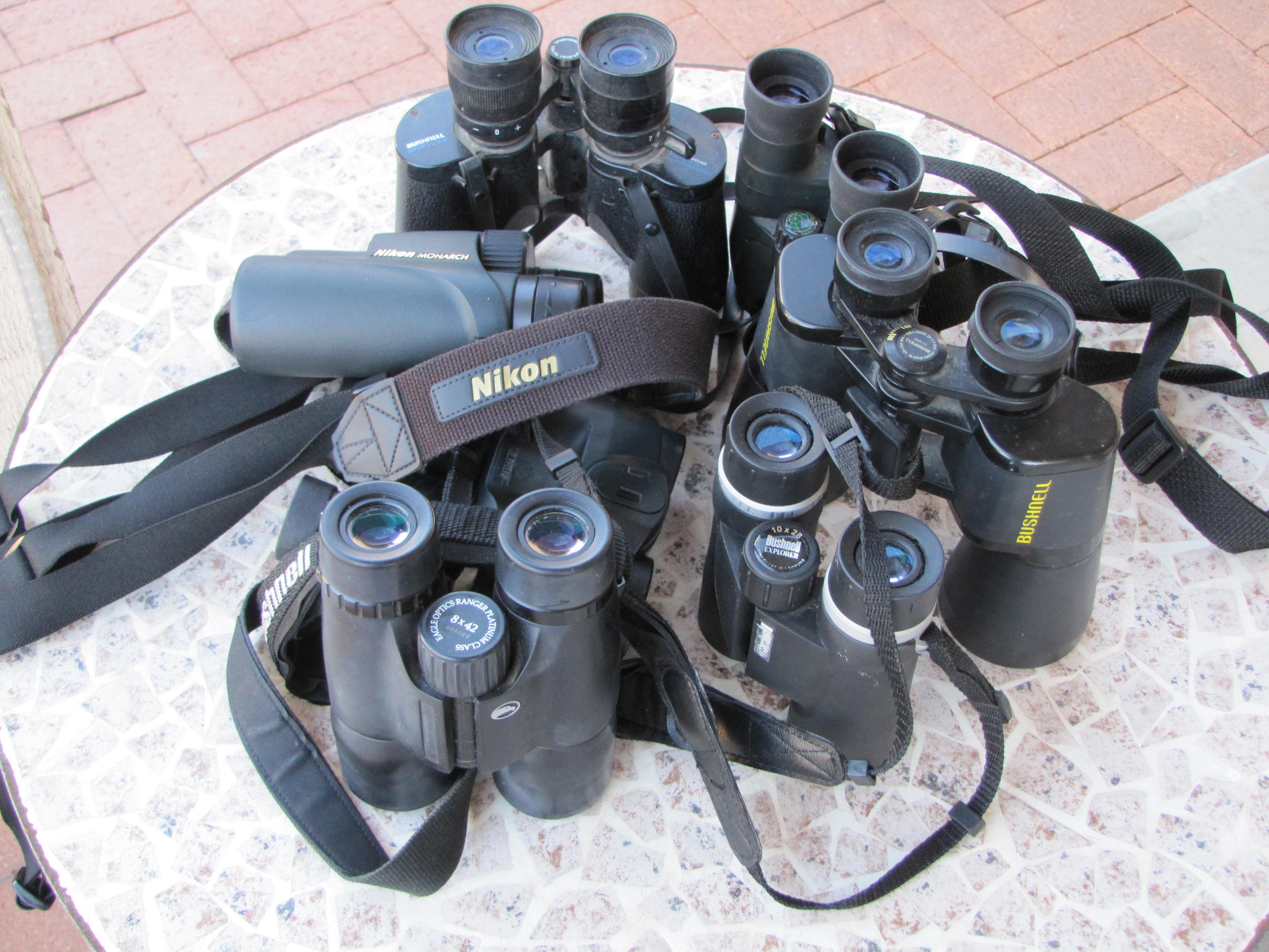 How to Buy Binoculars for Birdwatching